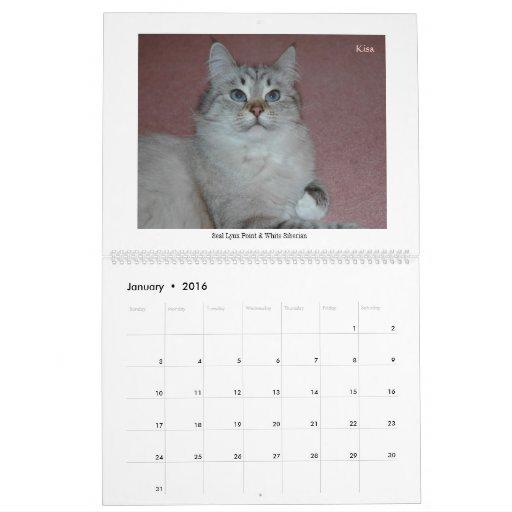 Calendario de 2014 de los siberianos gatos y de