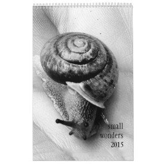 Calendario de 2015 pequeño maravillas