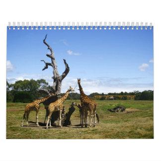 Calendario de Australia 2012