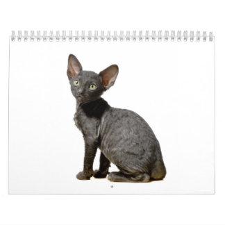 Calendario de Cornualles de los gatitos de Rex