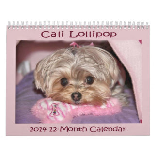 Calendario de doce meses del Lollipop 2014 de Cali