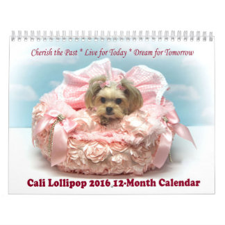 Calendario de doce meses del Lollipop 2016 de Cali