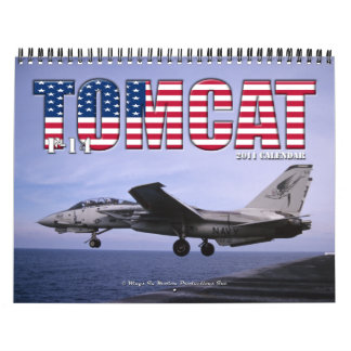 Calendario de F-14 Tomcat 2011
