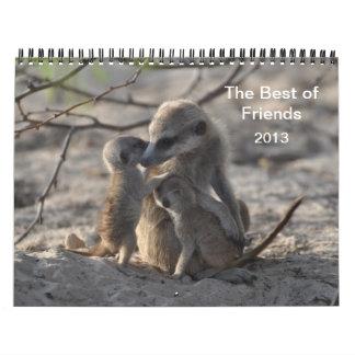 Calendario de FKMP Meerkats 2013