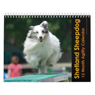 Calendario de la agilidad del perro pastor de Shet