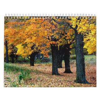 Calendario de la escritura de los árboles