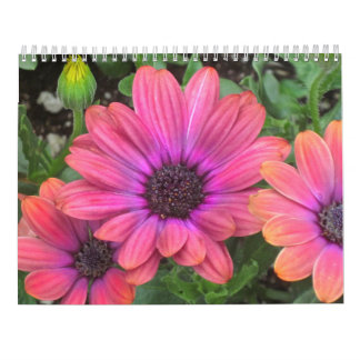 Calendario de la flor