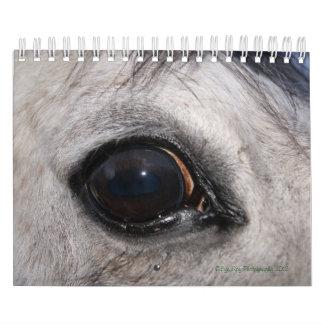 Calendario de la foto del espía del ojo