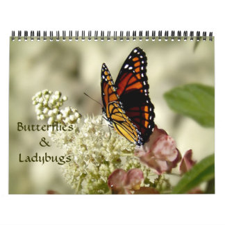 Calendario de la fotografía de las mariposas y de