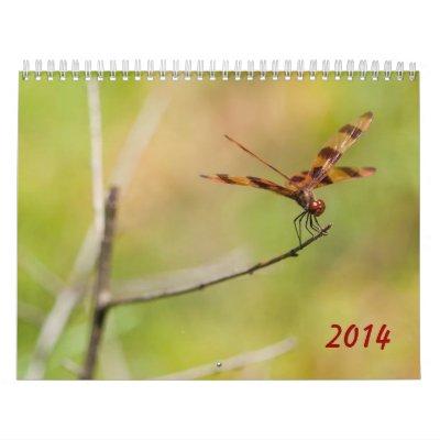 Calendario de la libélula 2014 y del Damselfly