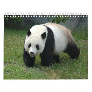 Calendario de la panda gigante