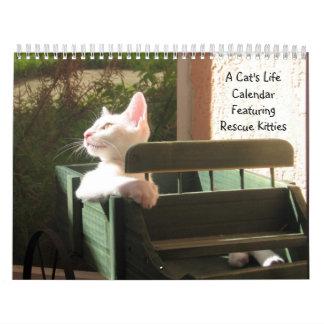 Calendario de la vida de un gato