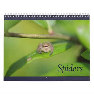 Calendario de las arañas