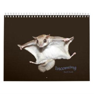 Calendario de las ardillas de vuelo