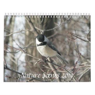 Calendario de las escenas 2010 de la naturaleza