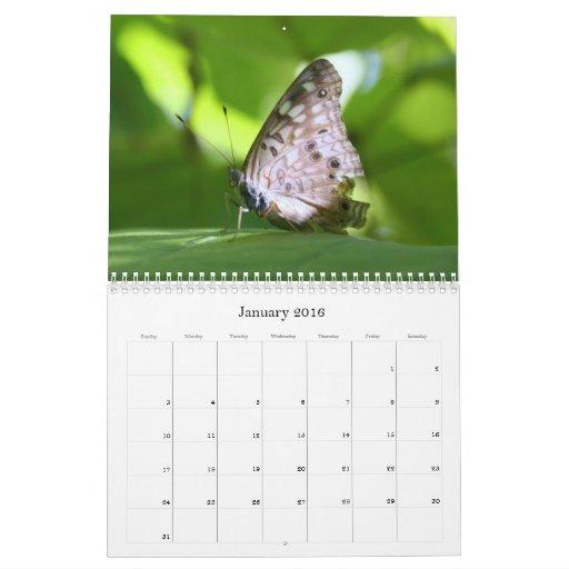 Calendario de las mariposas 2011