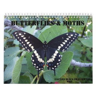 Calendario de las mariposas y de las polillas