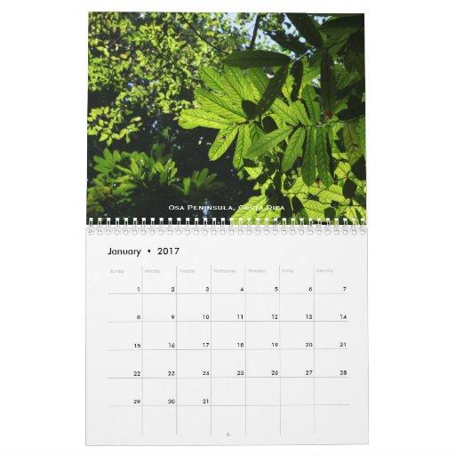 Calendario de las selvas tropicales
