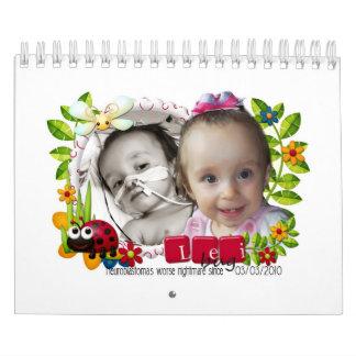Calendario de Leikyn