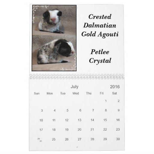 Calendario de los Cavies de Petlee julio-diciembre