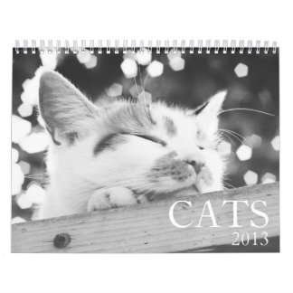 Calendario de los gatos 2013