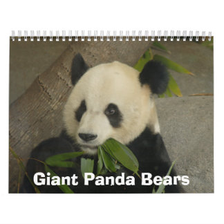 Calendario de los osos de panda gigante, osos de p