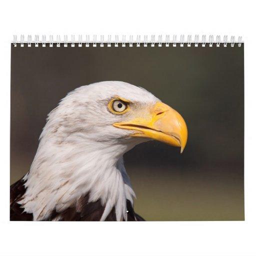 Calendario de los pájaros 2013