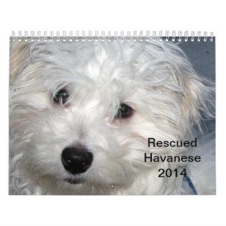 Calendario de los perritos 2014 de Havanese del re