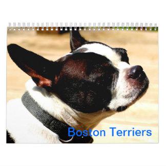Calendario de los terrieres de Boston