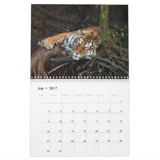 Calendario de los tigres de Bengala, tigres de