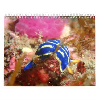 Calendario de Nudibranch