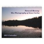 Calendario de pared 2011