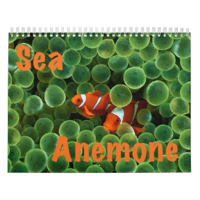 Calendario de pared de la anémona de mar