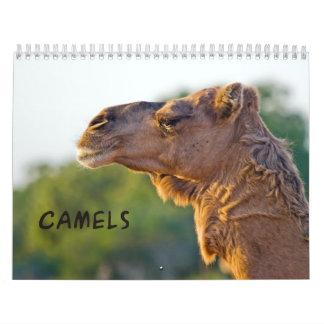 Calendario de pared de los CAMELLOS 2013