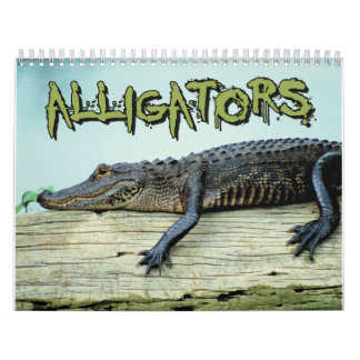 Calendario de pared de los cocodrilos