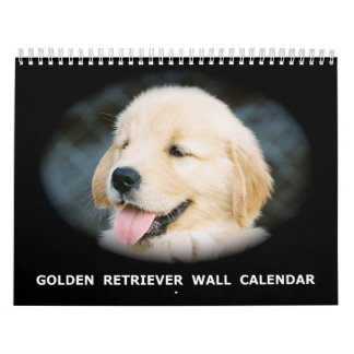 Calendario de pared del perrito del golden retriev