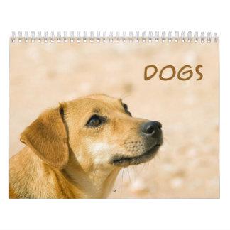 Calendario de pared lindo de los perros 2013