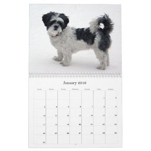 Calendario de Shih Tzu