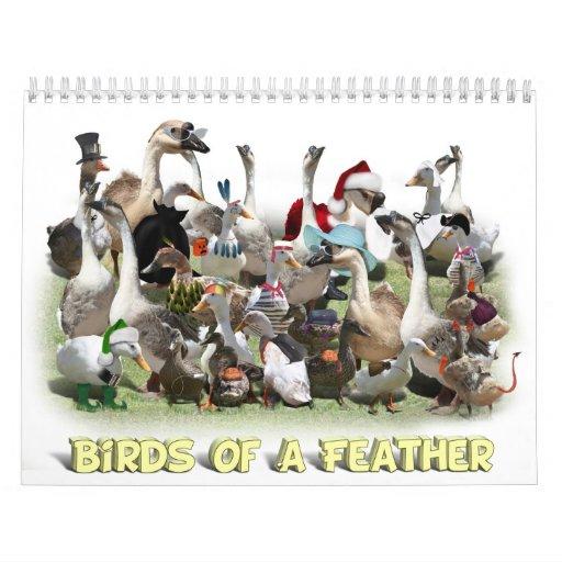 Calendario del Birds of a Feather