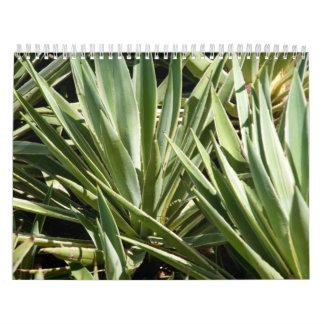 Calendario del cactus