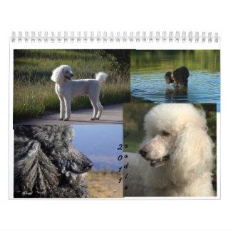 Calendario del caniche estándar 2011