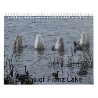 Calendario del cisne