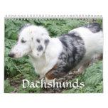 Calendario del Dachshund