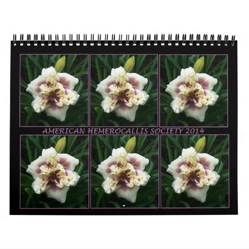 Calendario del Daylily de 2014 AHS
