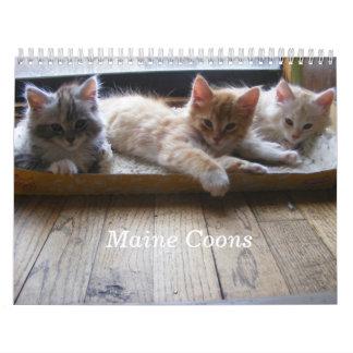 Calendario del gatito del Coon de Maine
