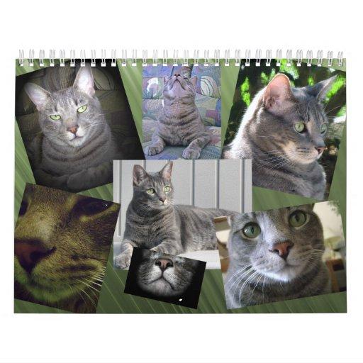 Calendario del gato