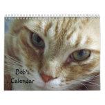 Calendario del gato de Tabby de 2014 naranjas que