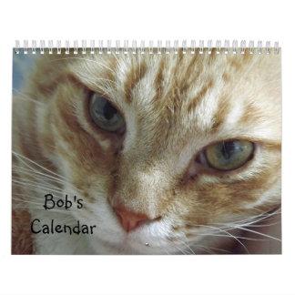 Calendario del gato de Tabby de 2015 naranjas que