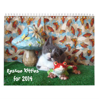 Calendario del gato del gatito del rescate - 2014