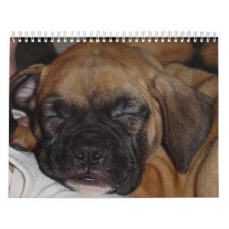 Calendario del mascota
